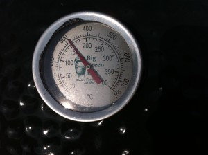 300 Degrees on the Big Green Egg
